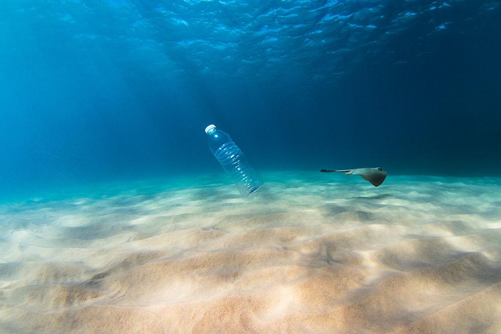 Journée mondiale de l'ocean