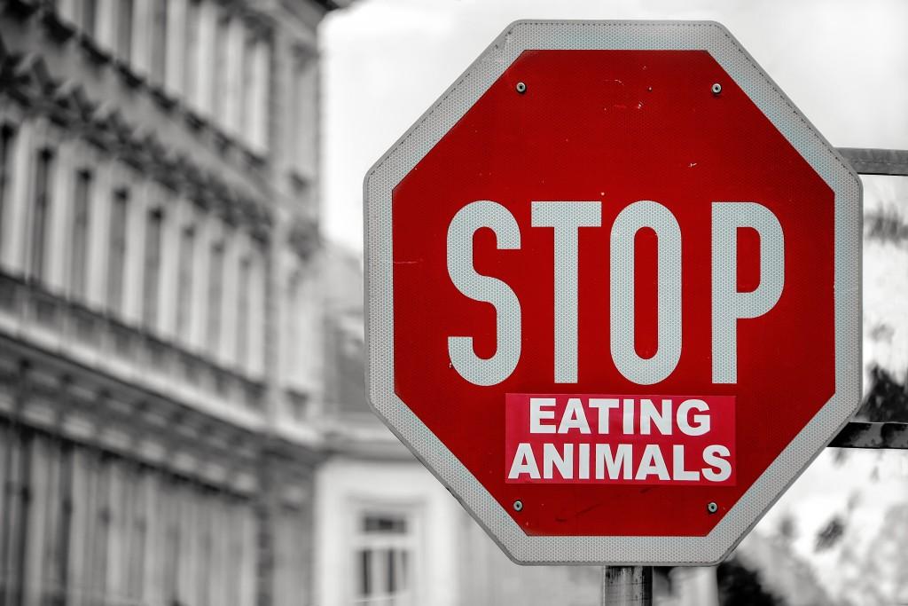 Tout savoir sur la tendance vegan