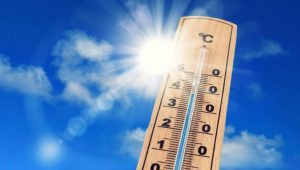 Canicule forte température