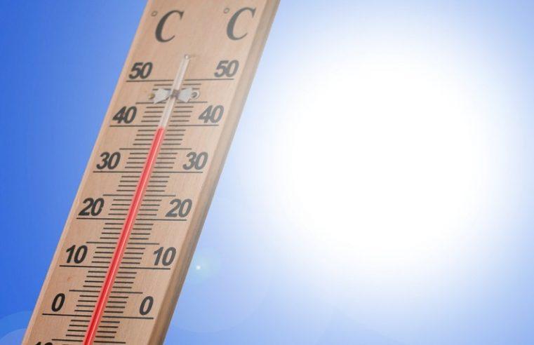 Canicule, records de température battus